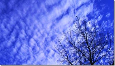 blue sky_edited-1